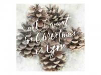 "Postkarte 12.1 x 12.1 cm Nr.231 ""All I want for Christmas is you"""
